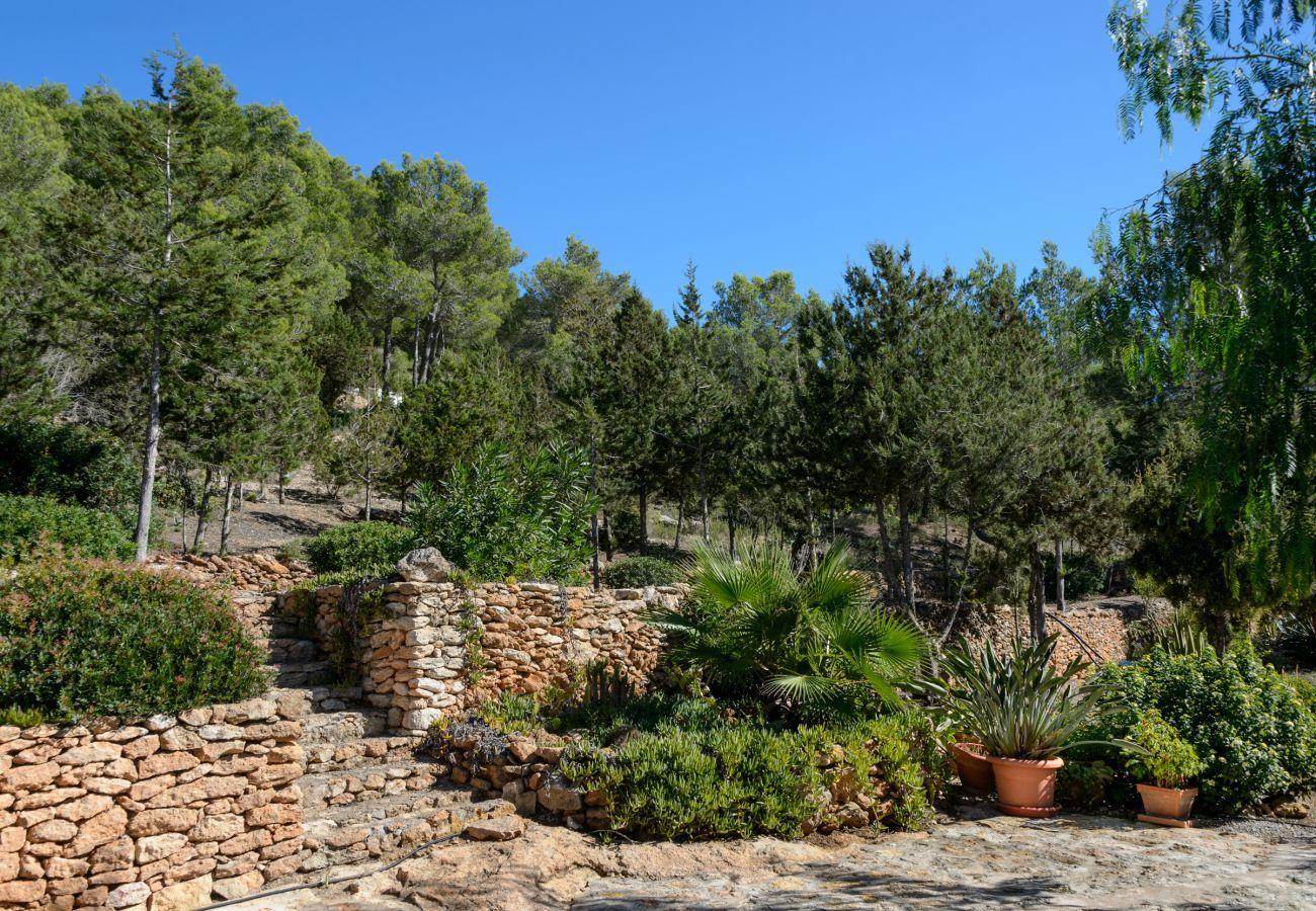 Casa rural en San Carlos/ Sant Carles de Peralta - Can Patri, Finca 5StarsHome Ibiza
